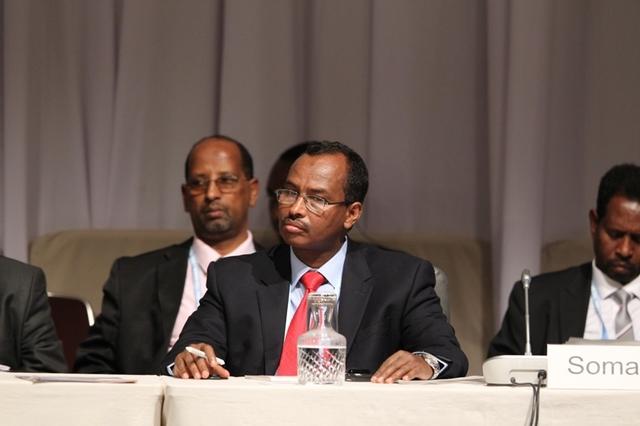 Somalia Conference Japan
